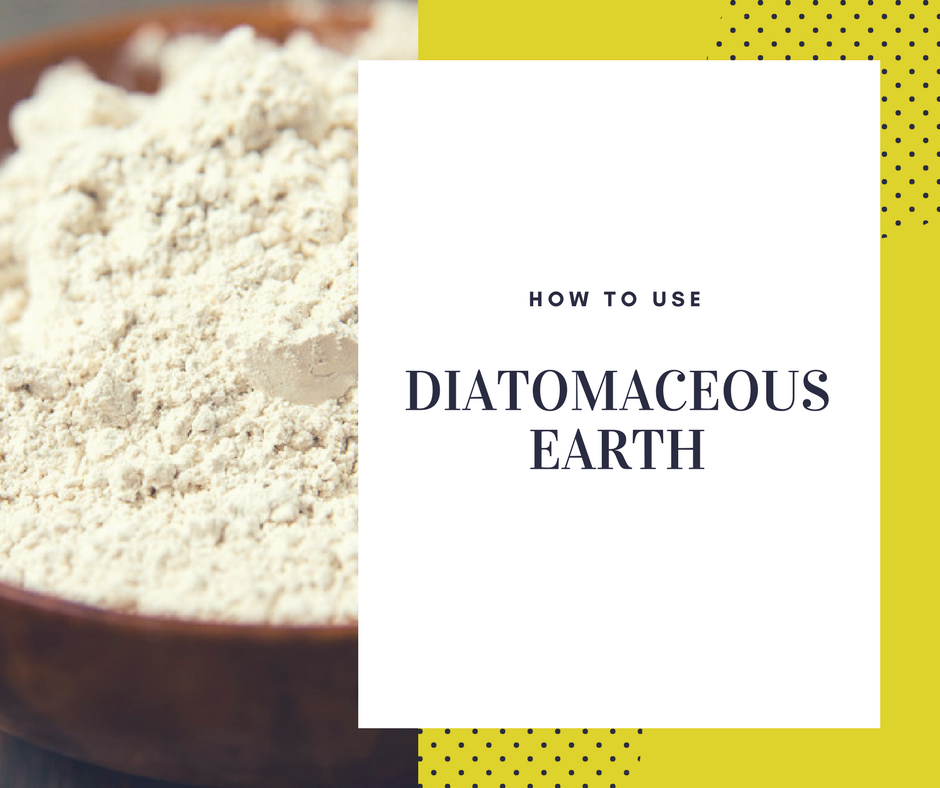 Can Dogs Consume Food Grade Diatomaceous Earth
